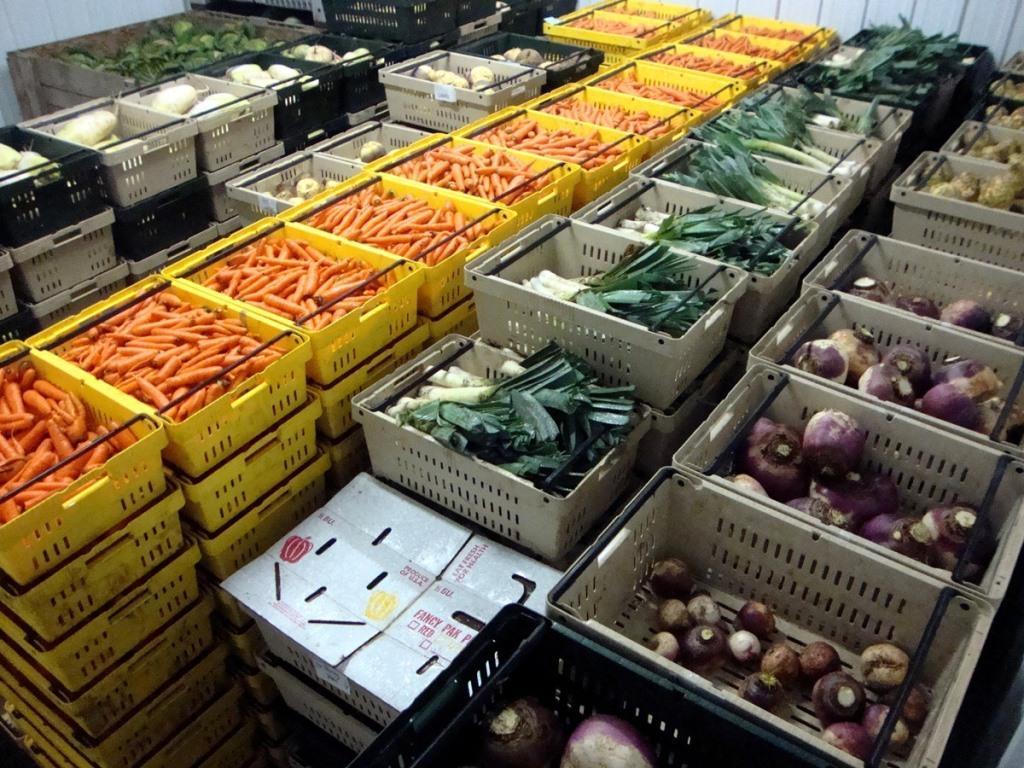 Хранение сельскохозяйственной продукции