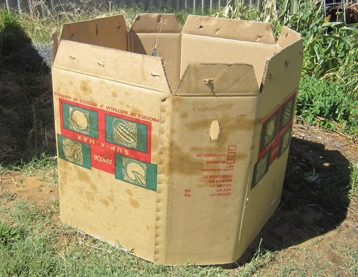 Неправильный контейнер для компоста 2